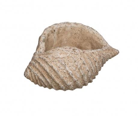 Decoratiune Sea Shell