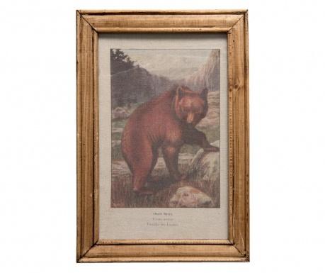 Bear Kép 25x35 cm
