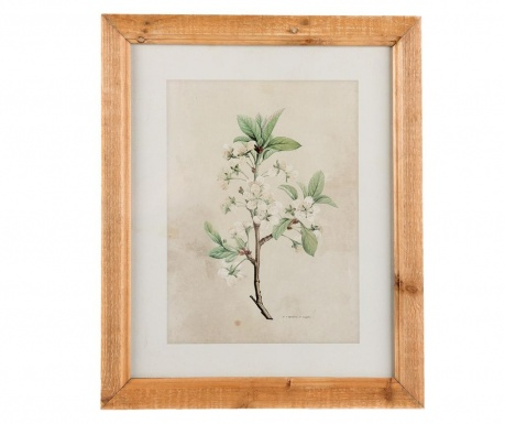 Nature Kép 33x40 cm