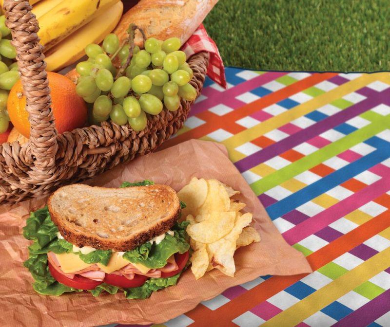 Deka za piknik Multi Check 127x152 cm