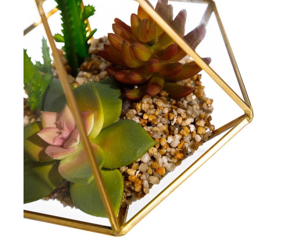 Greenhouse Edény terráriumnak