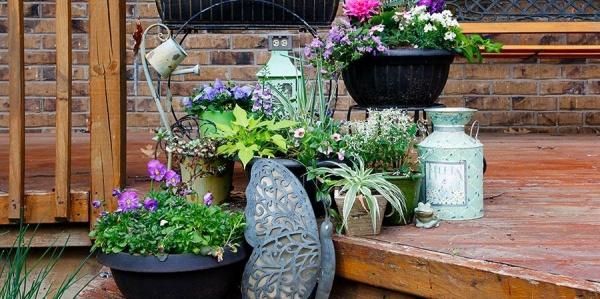Adobe zahrada