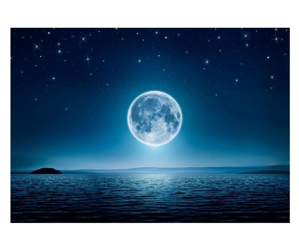 Moonlit Night Fotótapéta 210x300 cm
