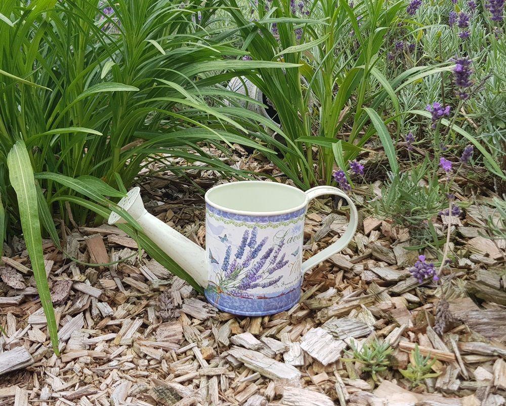 Lavender Small Can Díszöntöző